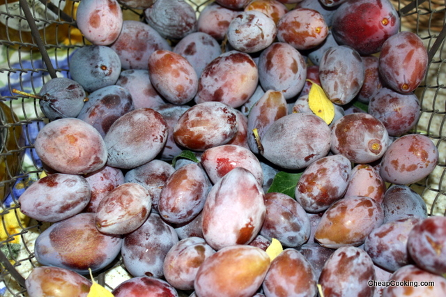 Plum Jam from Italian Plums aka Prune Plums